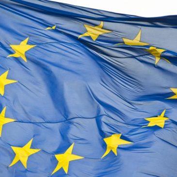 Viaje del CFEME a las instituciones europeas