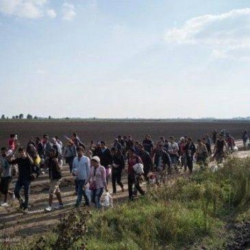 La crisis de los refugiados: Una mirada desde Europa